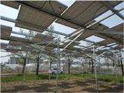 太陽光発電-農地用|農業用架台イメージ画像1|高知|太陽光|オール電化|有限会社 サンクオリティ