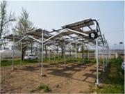 太陽光発電-農地用|農業用架台イメージ画像3|高知|太陽光|オール電化|有限会社 サンクオリティ