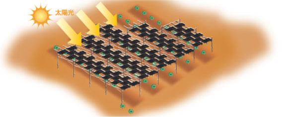 太陽光発電-農地用|上部はソーラー、下部は自由自在-イメージ画像|高知|太陽光|オール電化|有限会社 サンクオリティ