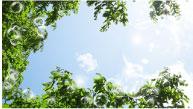 太陽光発電|イメージ写真|高知|太陽光|オール電化|有限会社 サンクオリティ